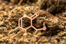 Load image into Gallery viewer, Catnip Molecule Necklace - Meowy Janes