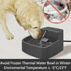Pet Heated Bowl