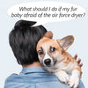 What should I do if my fur baby afraid of air force dryer? There are 3 ways to solve this problem.