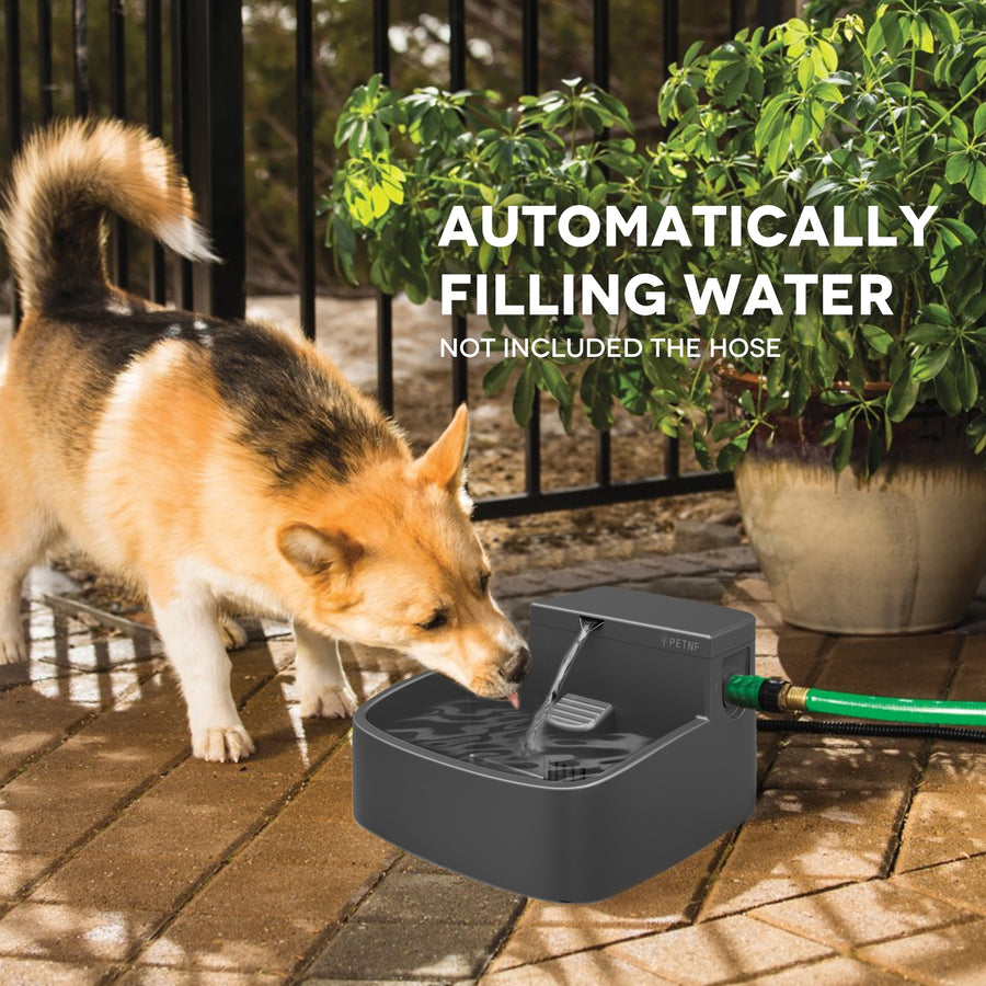 Auto Filling Garden Water Feeder for Multiple Pets Dogs Cats Chicken Squirrels,Winter Ice-Free,2 Filters,Anti-Bite Cable,52oz