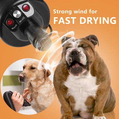 Lesotc Upgraded Dog Dryer, Quick Dry Dog Grooming Dryer