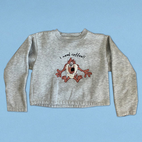 Tasmanian Devil Looney Toons Crop Top Sweater