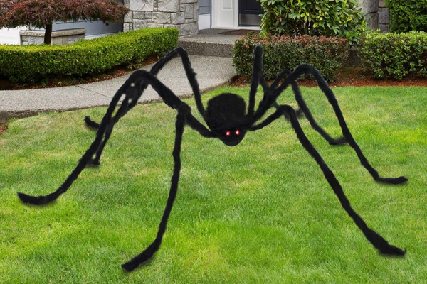 6.5ft LED Eyes Hairy Black Giant Spider for Halloween Indoor/Outdoor Decorations