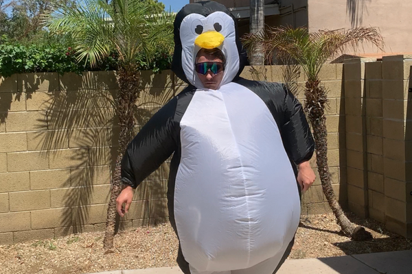 ADULT FULL-BODY INFLATABLE PENGUIN COSTUME