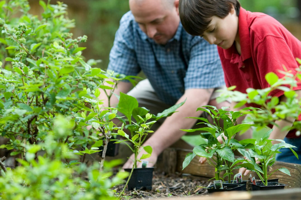 Father and son gardening together