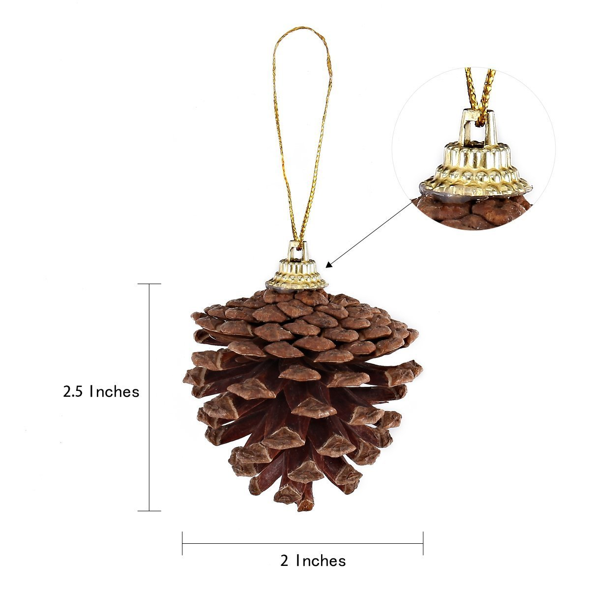 Hanging Real Pine Cone Ornaments, 36-Pack