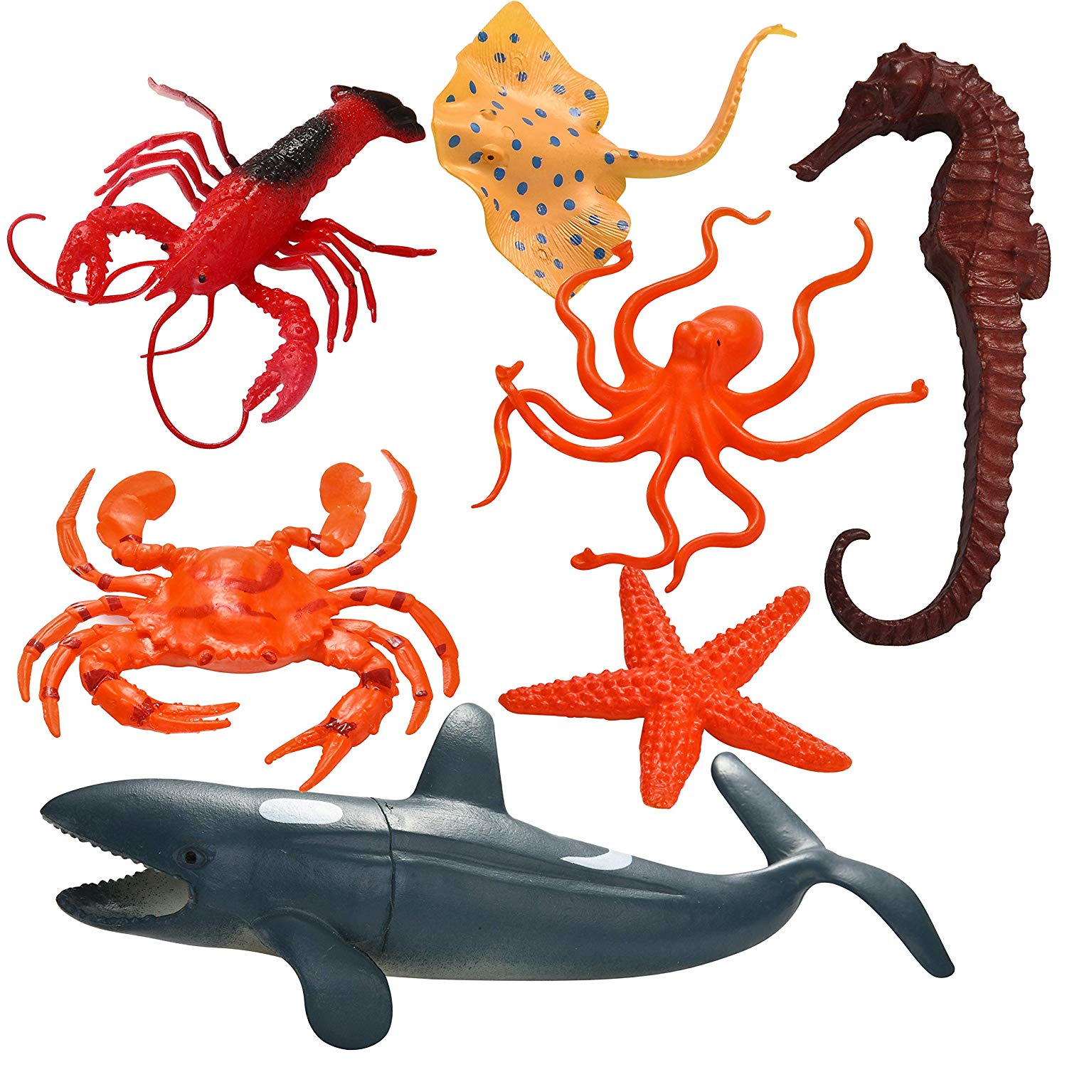 Valentine Gift Cards with Funny Sea Animal Toys