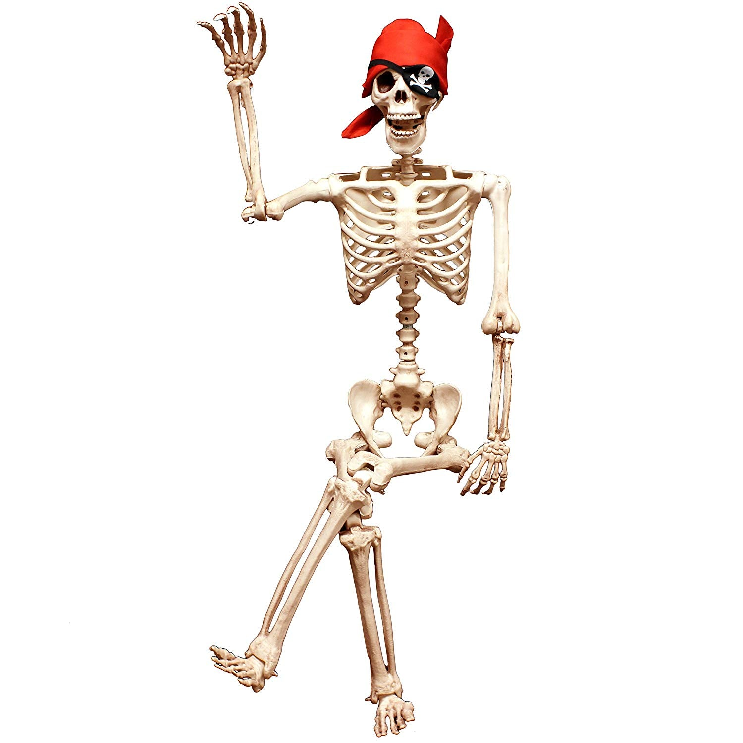Pose-N-Stay Life-Sized Skeleton