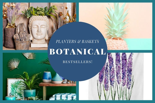 Shop Botanical