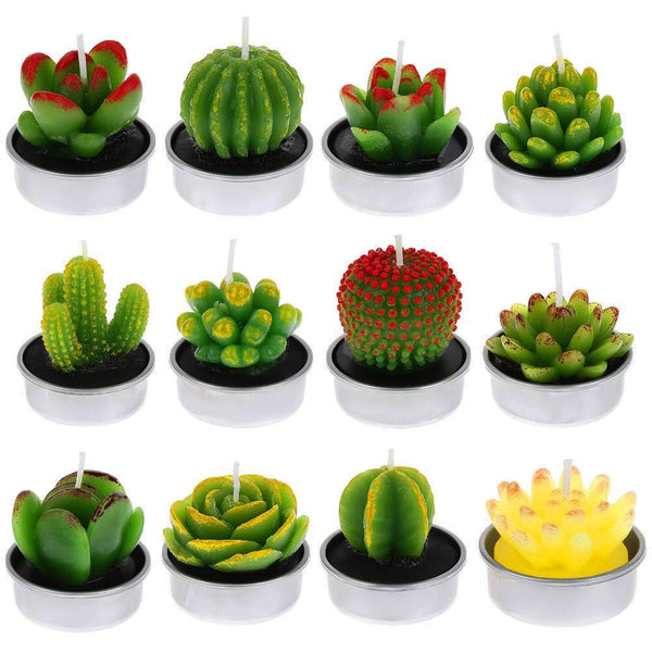 12 Green Mini Cactus Succulents Tealight Candles - NovaandKnox.com