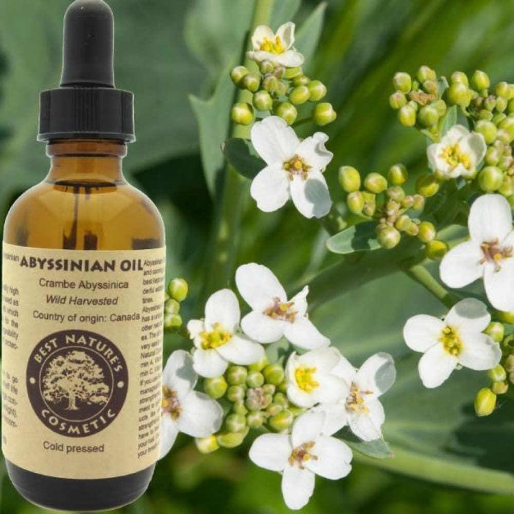 Abyssinian Oil - Conventional (Non GMO) Cold Pressed