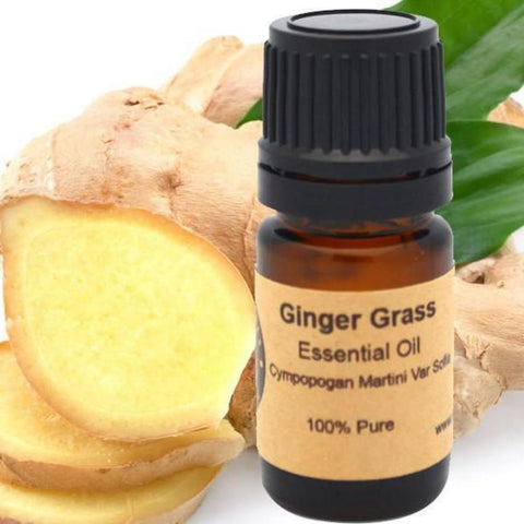 Ginger Grass Essential Oil - Conventional (Non GMO) Steam Distilled