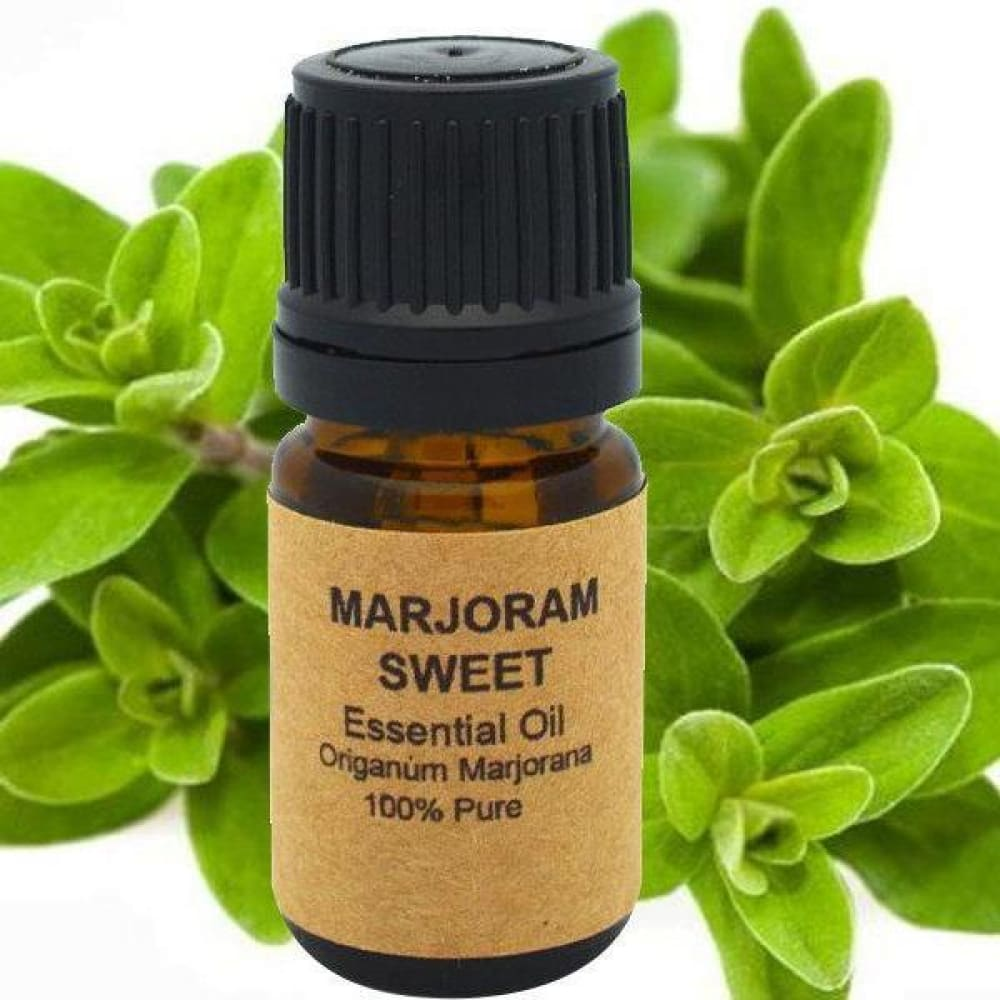 Marjoram Essential Oil (Sweet) - Conventional (Non GMO) Steam Distilled