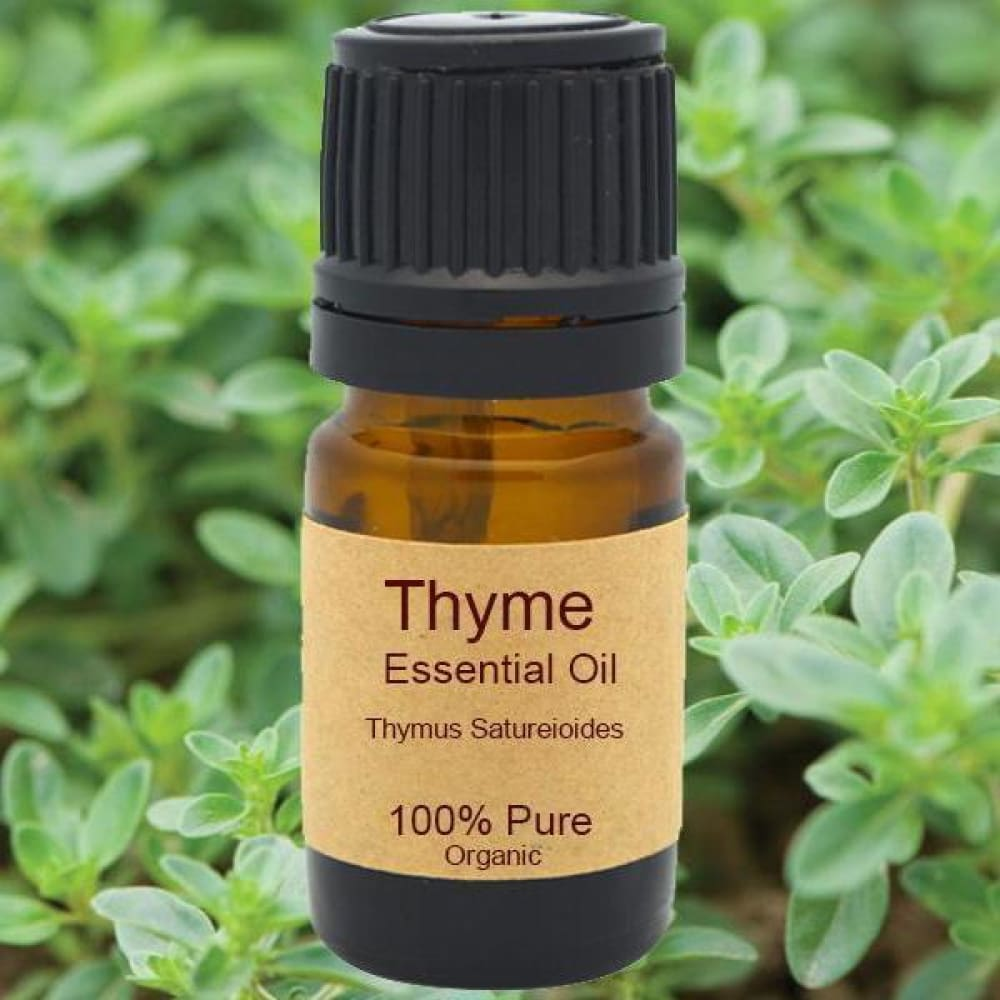 Thyme Essential Oil - Organic Steam Distilled