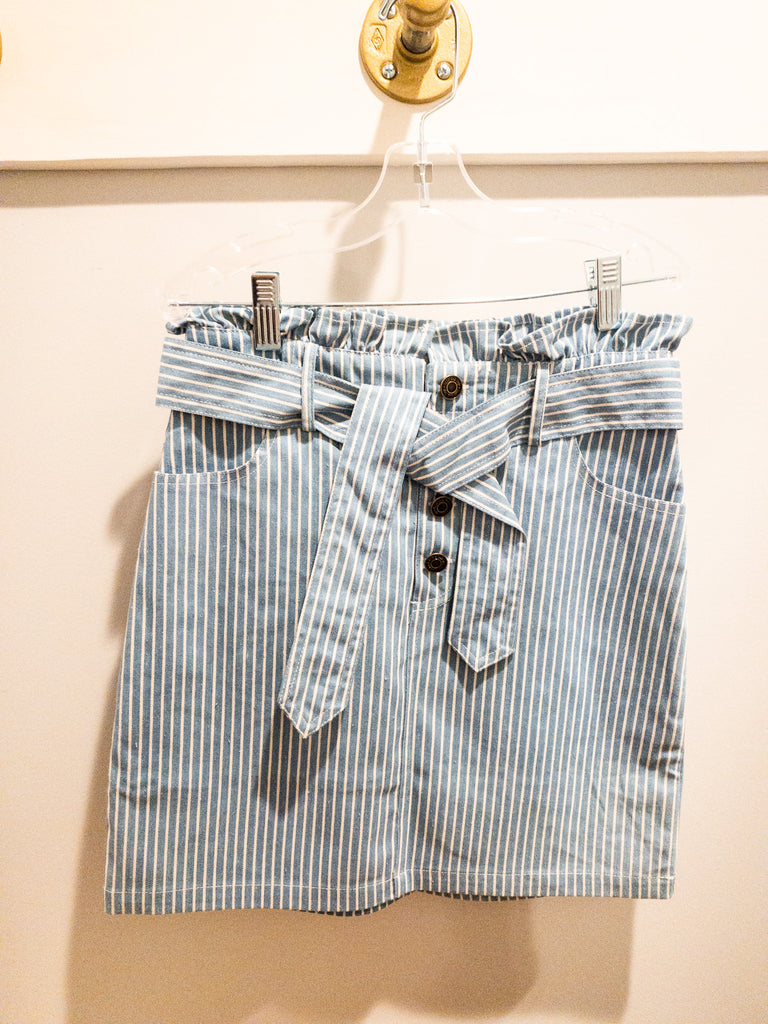 SS No Doubts Stripe Denim Skirt