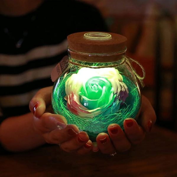 Illuminated Rose In a Jar