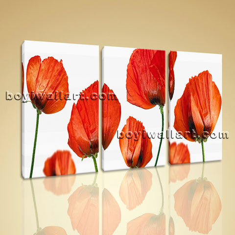 Large Poppy Flowers Print Modern Wall Decor Bedroom Three Pieces