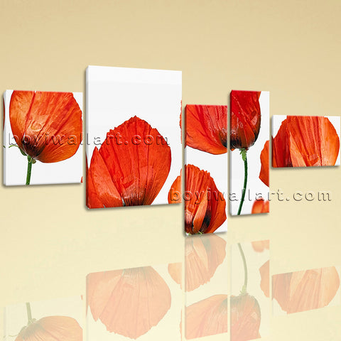 Extra Large Poppy Flowers Wall Art Modern Painting Bedroom Five Pieces Prints