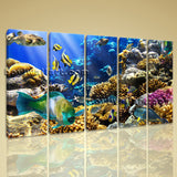 Large Tropical Fis Hanimal Wall Decor Canvas Art Dining Room Five Panels Print