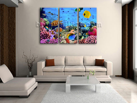 Large Tropical Fish Coral Animal Wall Art Photography Bedroom 1 Pieces Print