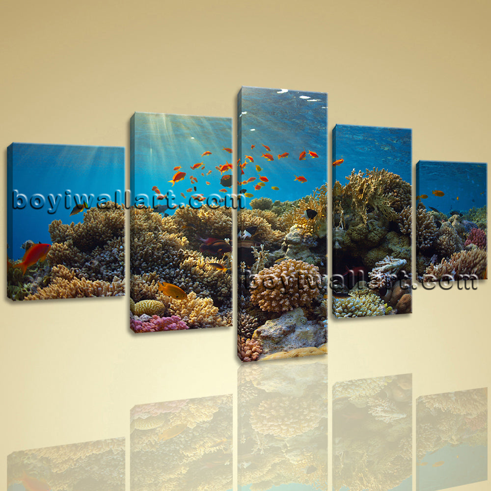 Large Tropical Fish Coral Animal Wall Decor Photography Art Dining Room Prints