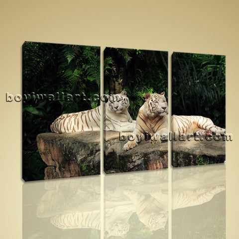 Large White Tiger Wall Art Painting Photography Bedroom 1 Panels Canvas Print