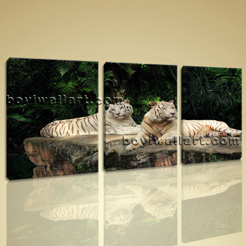 Large White Tiger Wall Art Canvas Painting Living Room Three Panels Print