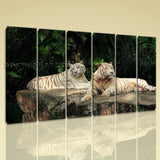 Large White Tiger Wall Art Decor Painting On Canvas Living Room 6 Pieces Print