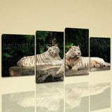 Large White Tiger Wall Art Hd Print Photography Living Room Four Pieces Giclee