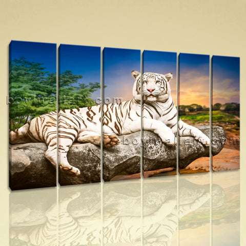 Large White Tiger Wall Art Decor Photography Canvas Living Room Print