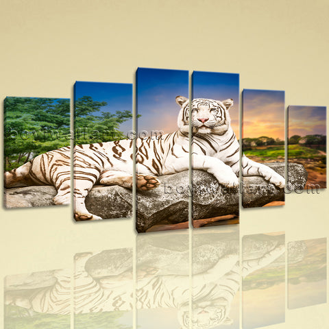 Extra Large White Tiger Wall Art Picture Oil Painting Dining Room Prints
