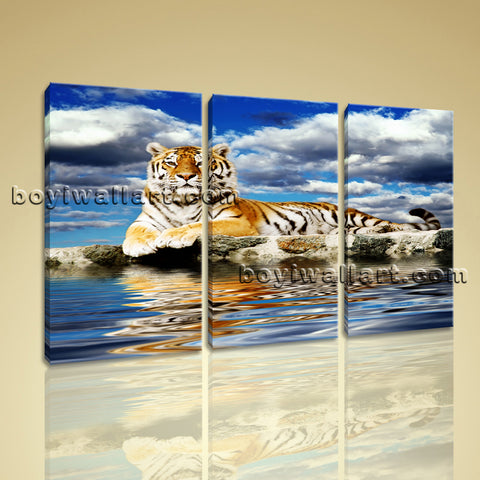 Large Tiger Wall Art Picture Photography Canvas Bedroom 1 Panels Prints