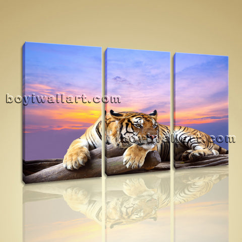 Large Tiger Wall Art Canvas Photography Bedroom Triptych Pieces Print