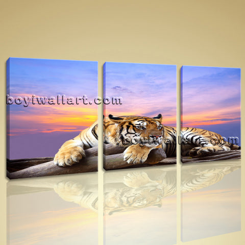 Large Tiger Wall Art Painting Photography Living Room Three Panels Canvas Print