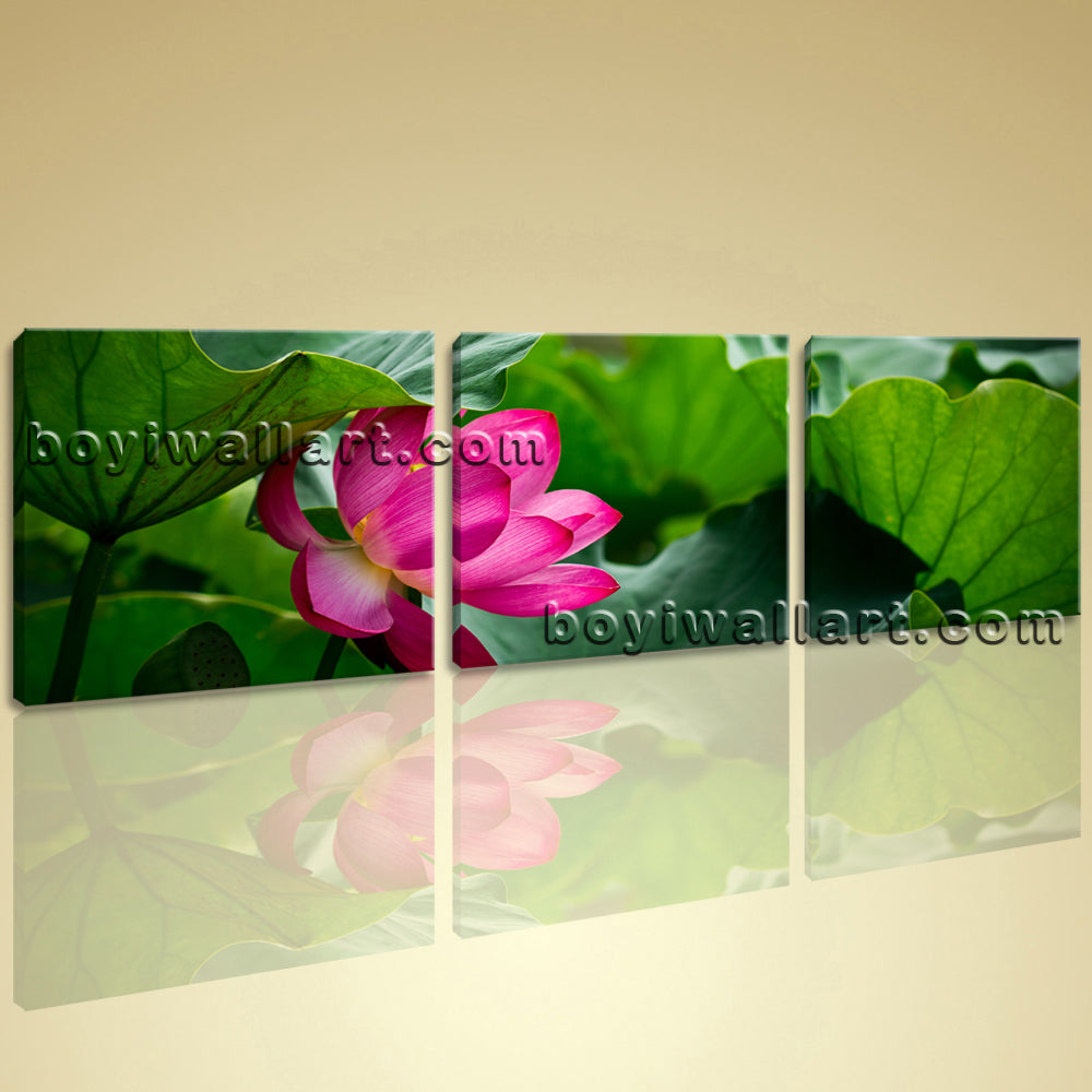 Large Canvas Wall Art Contemporary Home Decoration HD Print Water Lily Flowers