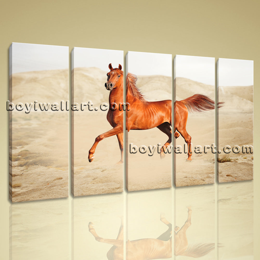 Large Giclee Print On Canvas Wall Art Horse Running Grassland Painting Framed