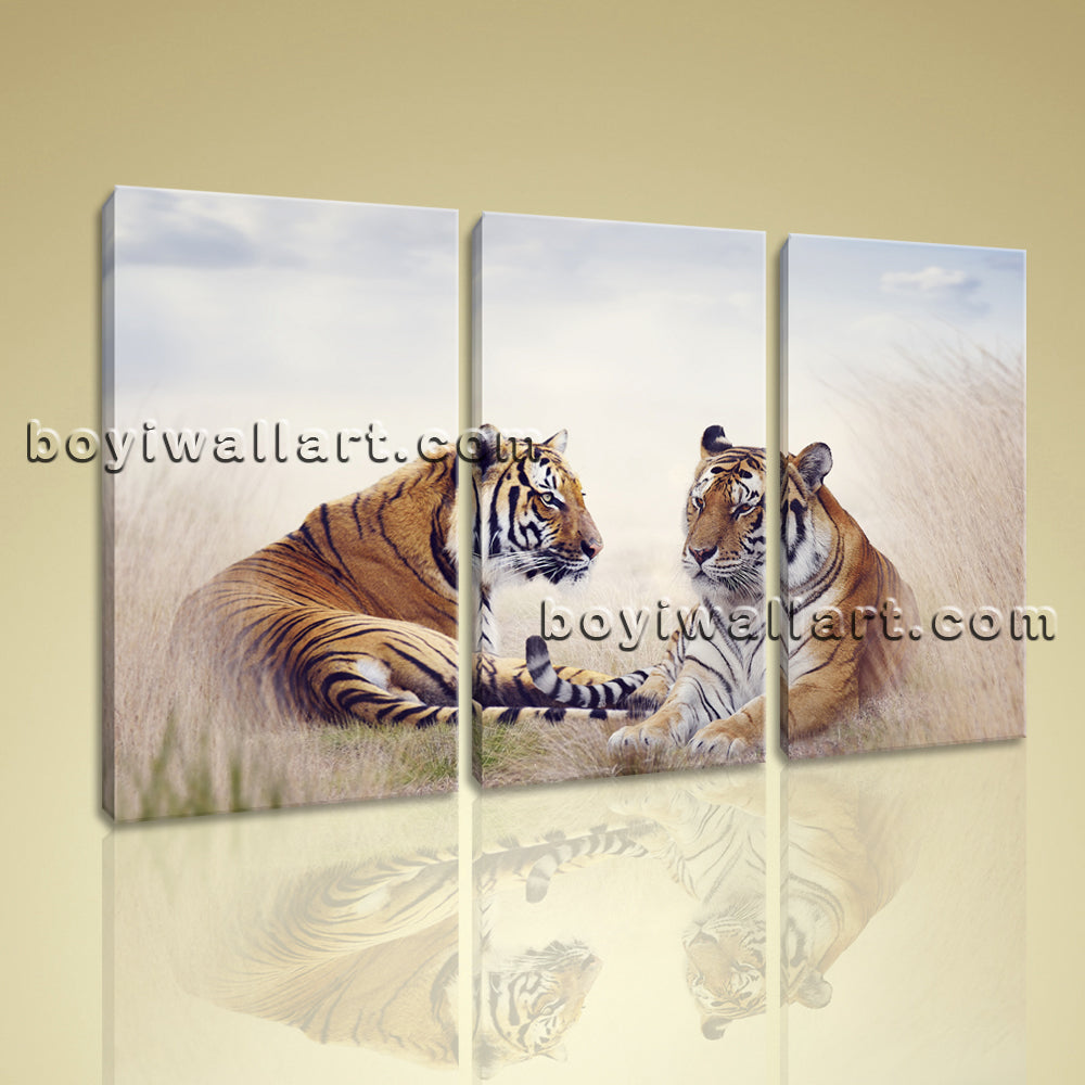 Large Hd Canvas Print Modern Abstract Wall Art Tiger Big Cat Wild Jungle Picture
