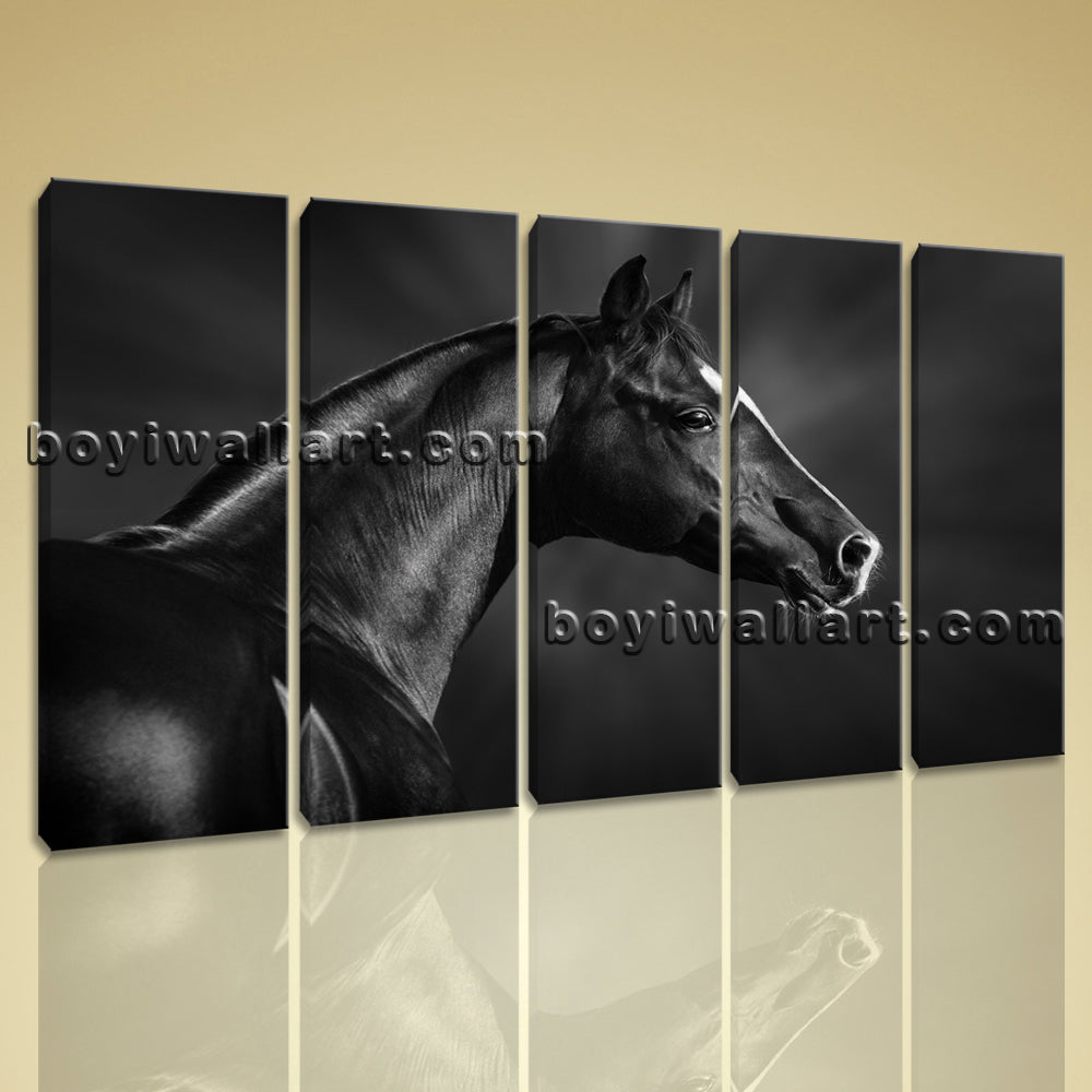 5 Panels Framed Dark Horse Painting Hd Print On Canvas Abstract Moder Wall Art