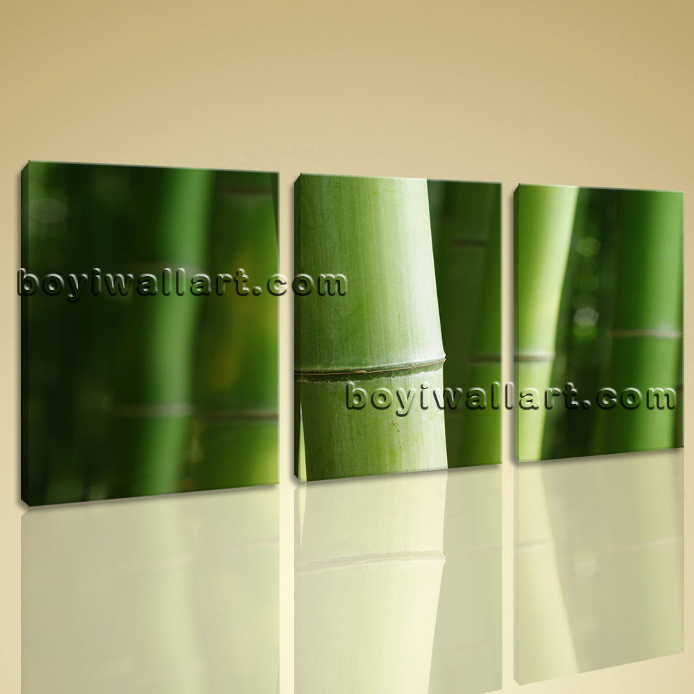 Canvas Wall Art Print Bamboo Tree Branches Home Decor Green Decorative Artwork