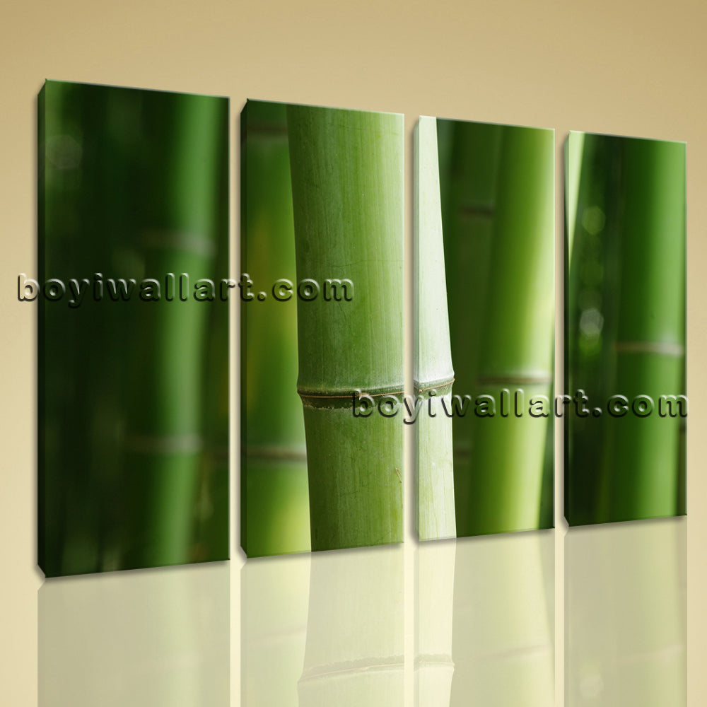 4 Pcs Modern Abstract Wall Art Botanical Feng Shui Zen Hd Print On Canvas Bamboo