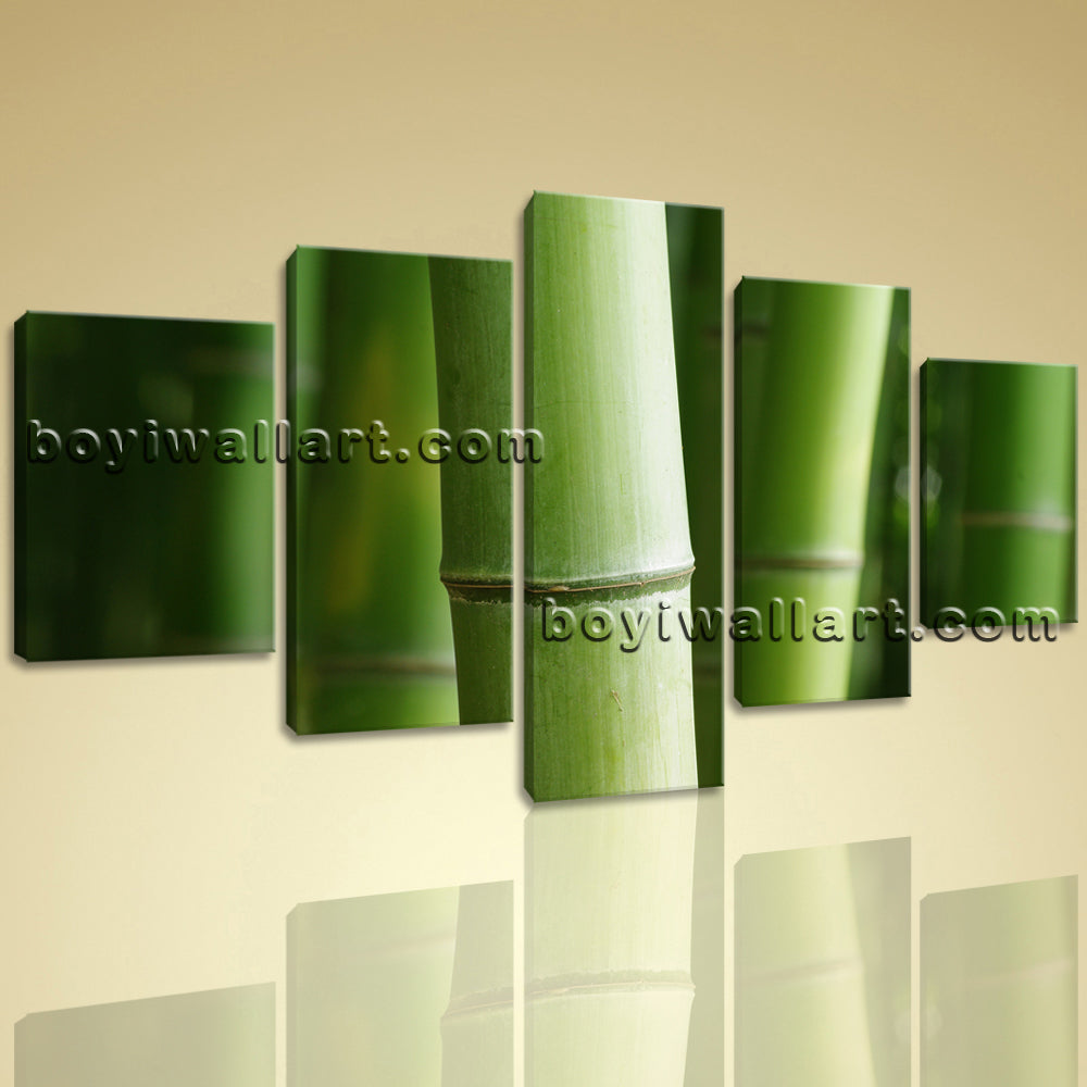 5 Pcs Modern Abstract Wall Art Botanical Feng Shui Zen Hd Print On Canvas Bamboo