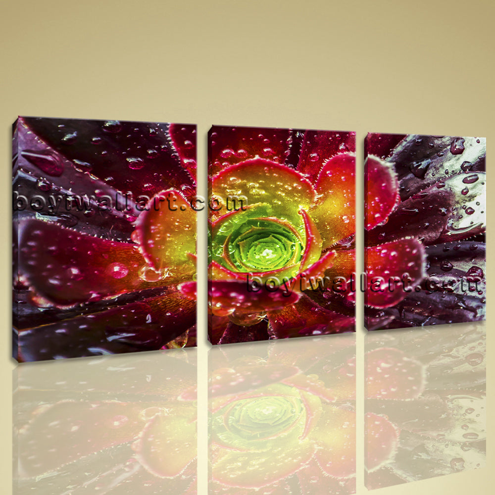 Large Contemporary Abstract Floral Picture Giclee Print Wall Art Canvas Flower