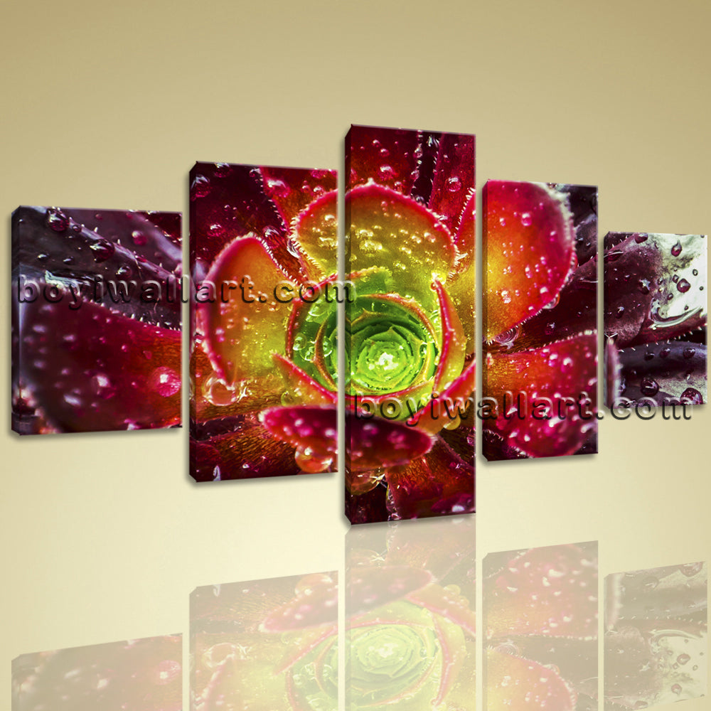 Large Contemporary Abstract Floral Picture Print Wall Art Canvas Flower Petals