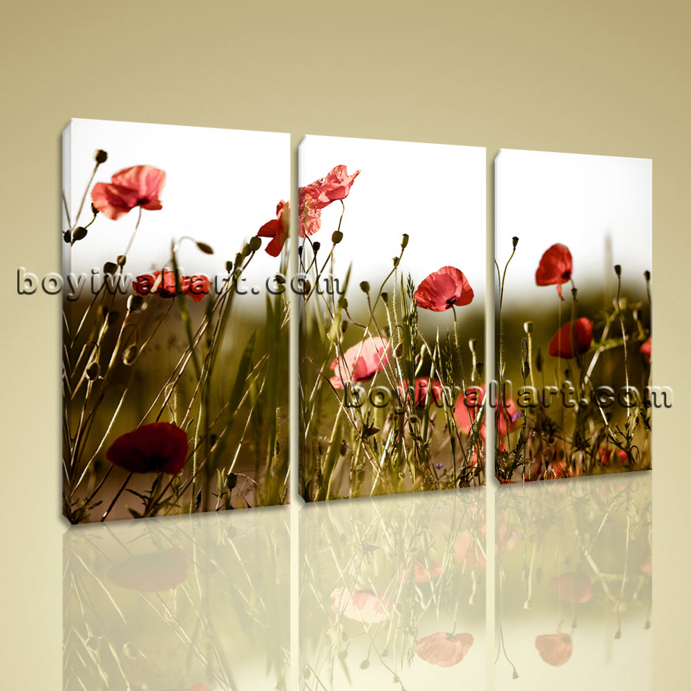 Large Contemporary Floral Wall Art Poppy Flower Canvas Print Home Decor Framed