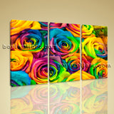 Large Contemporary Home  Decor Canvas Print Colorful Wall Art Abstract Flower