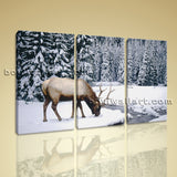 Large Contemporary Home Decor Wall Art Print Canvas Elk Winter Snow Wild Animal