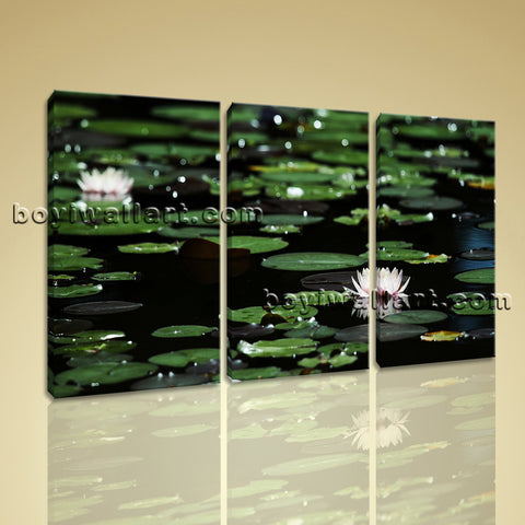 Large Water Lily Floral Impressionism Home Decor Wall Art Giclee Print BedRoom