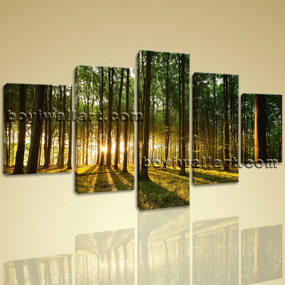 Large Beautiful Forest Landscape Photography Print Canvas Wall Art Dining Room