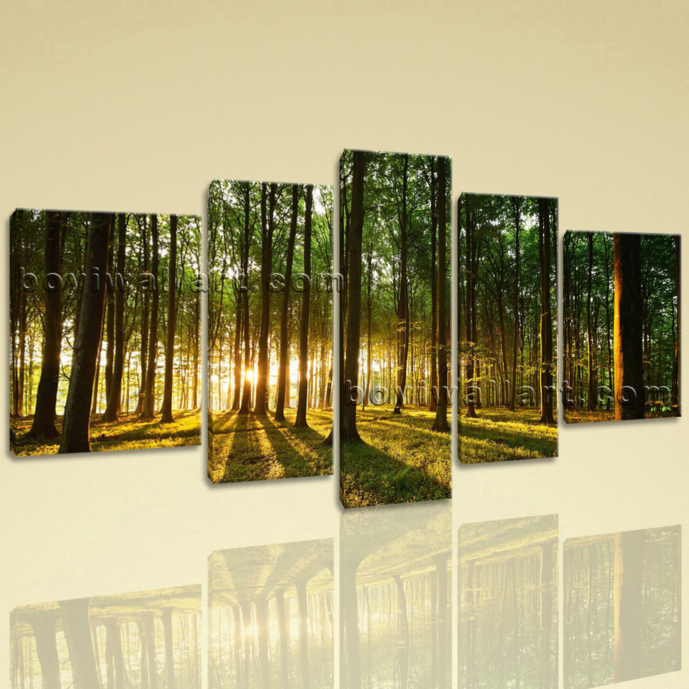 Extra Large Beautiful Forest Landscape Photography Wall Art Print ...