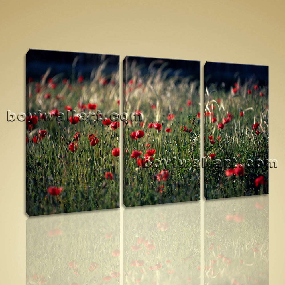 Large Crimson Field Kitty And Thomas Floral Contemporary Canvas Print Wall Art